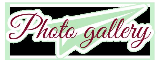 logo_photogallery6